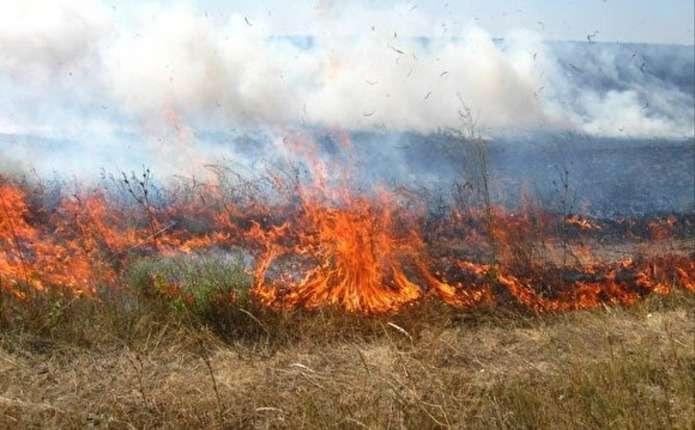 Впродовж минулої доби на Прикарпатті зафіксовано відразу 10 підпалів сухої трави та побутового сміття