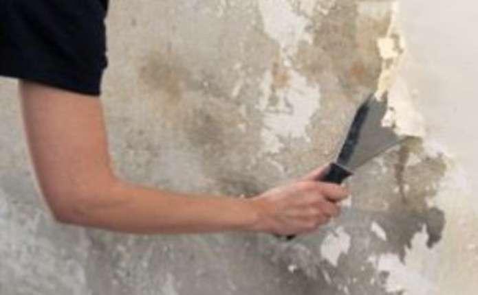 Как сделать ремонт если стены побелены