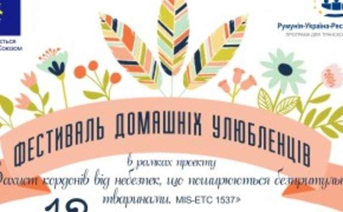 У Чернівцях вперше відбудеться фестиваль домашніх улюбленців