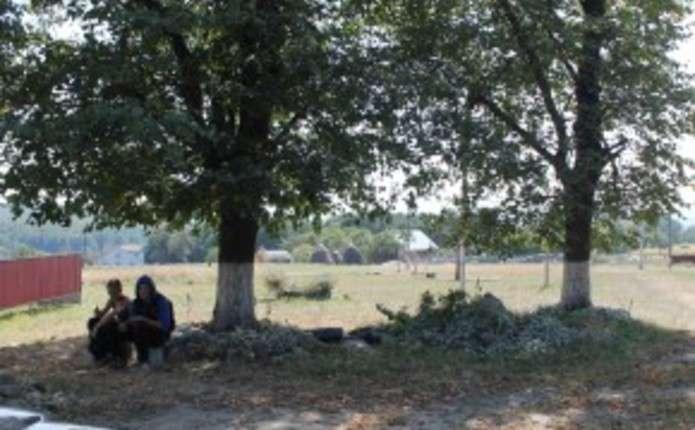 У селі на Сторожинеччині працюють на власних господарствах