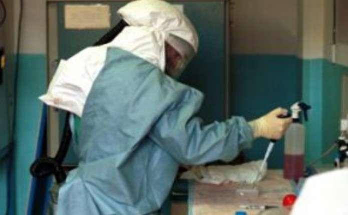 ВООЗ заявила про мутацію вірусу Ебола