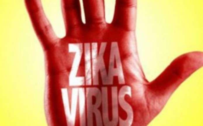 Названі найближчі до України держави, де водяться комарі-переносники вірусу Зіка