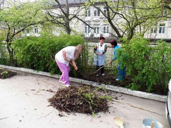 У Новоселицькій центральній районній лікарні пройшла Зелена толока