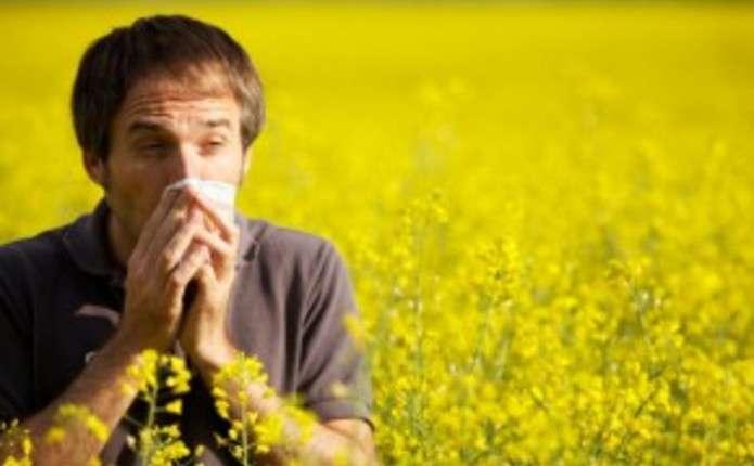 Як здолати алергію