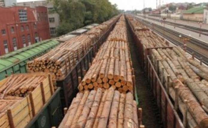 Москаль повідомив про майже два сотні вагонів дерева на кордоні