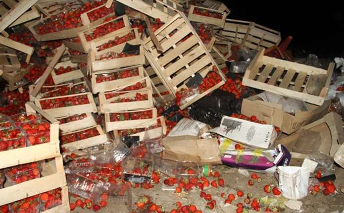 У Росії знищили майже 40 тонн української полуниці