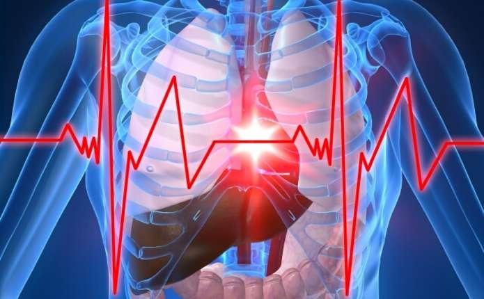 Від хвороб системи кровообігу у Чернівецькій області страждають понад 56% мешканців