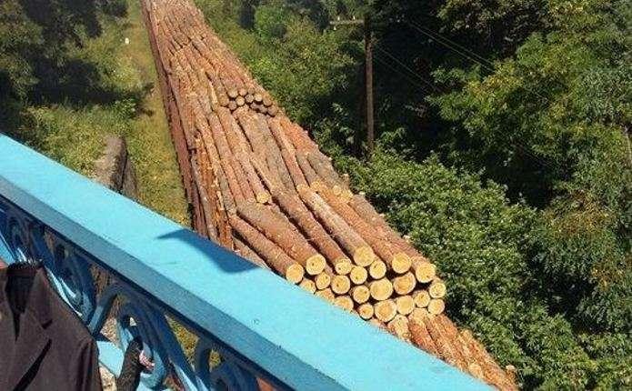 Блогер зафіксував черговий незаконний вивіз лісу у Чернівцях