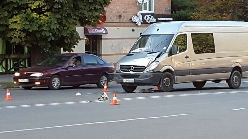 У Чернівцях на пішохідному переході мікроавтобус збив жінку