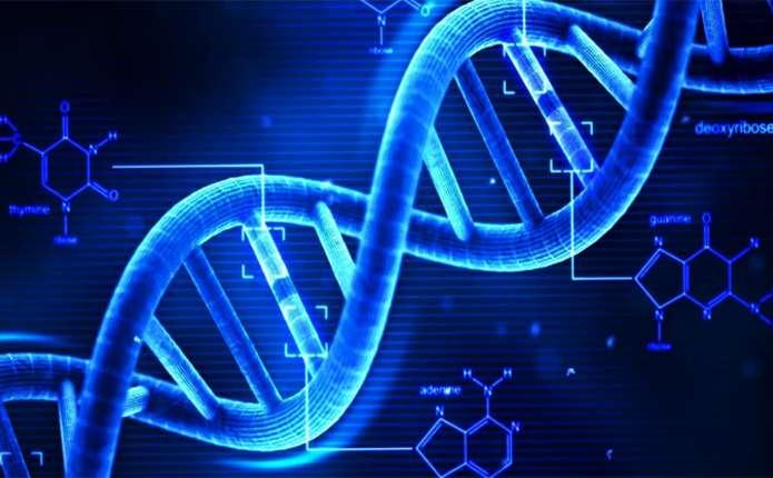 Біологи висунули нову теорію зародження життя