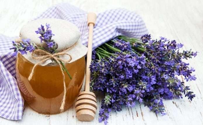 Вчені розповіли, який мед можна діабетикам