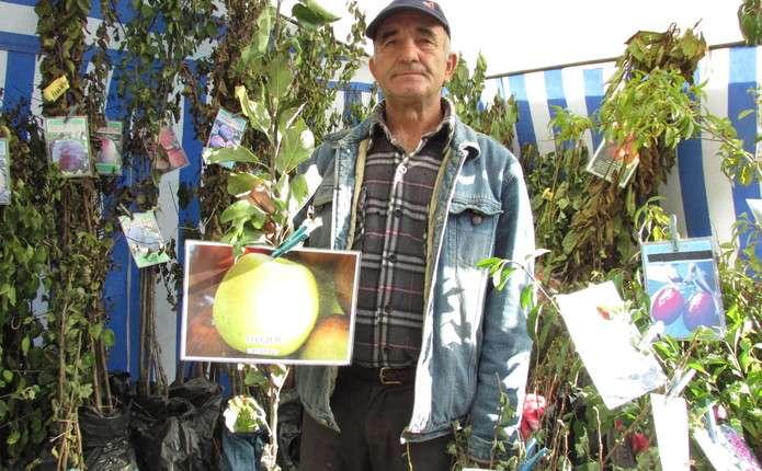 Які вибрати сорти плодів та як ідеально зберігати до нового врожаю