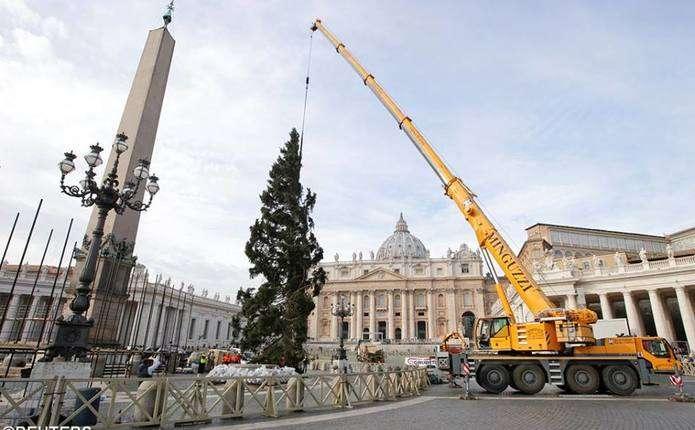Головну різдвяну ялинку світу встановили у Ватикані