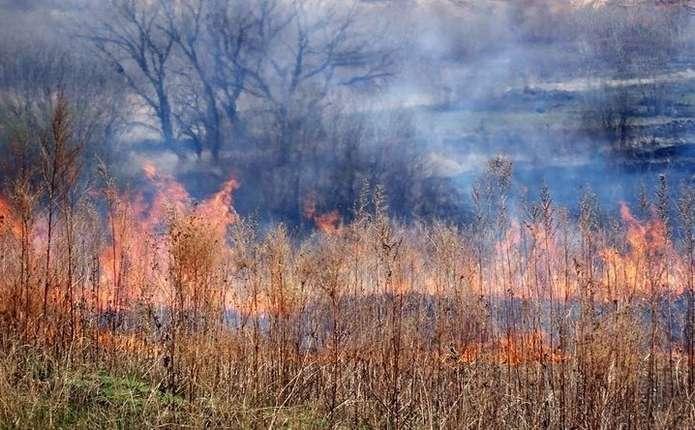 У Чернівецькій області сталося 4 пожежі - горіла суха трава