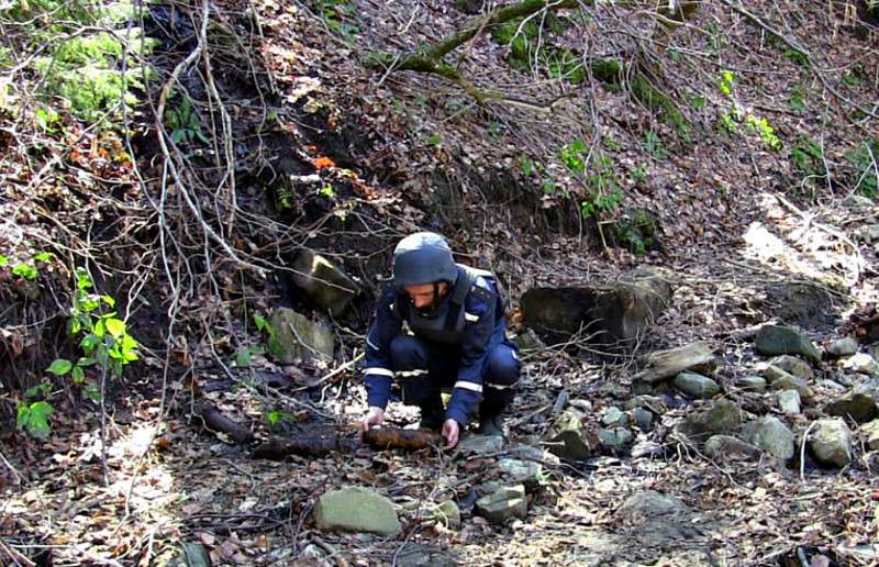На Буковині знайшли три артилерійські снаряди