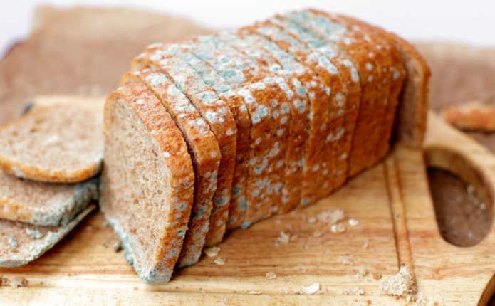 Наскільки безпечно їсти хліб з пліснявою