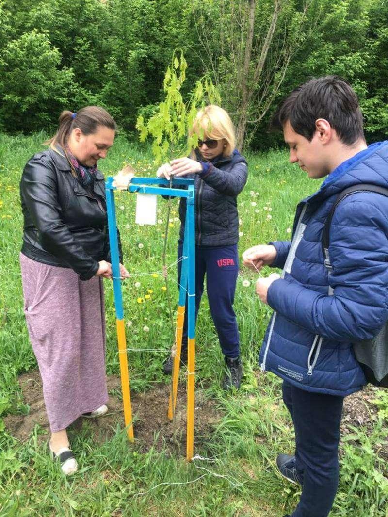 У Чернівцях у парку Жовтневий посадили дубочки в пам'ять про загиблих бійців АТО