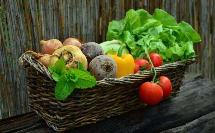 Поради, як правильно харчуватись в період літньої спеки