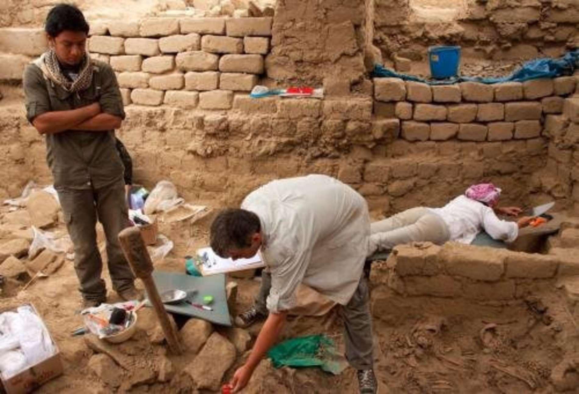 У багатому склепі розкопали 63 скелети в купі золота