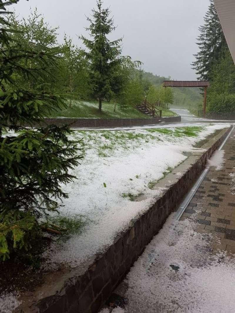 На Закарпатті випав сніг