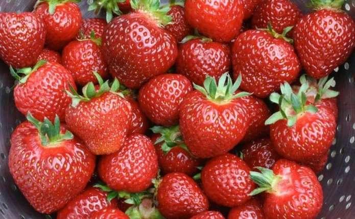 Вчені назвали найнебезпечніші для здоров'я людини фрукти і ягоди