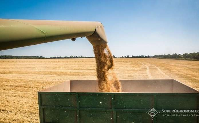 Цьогоріч на Буковині зібрали рекордний для області урожай зерна, овочів та фруктів