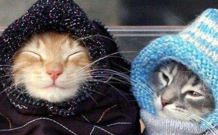 Впродовж тижня в Україні різко похолодає
