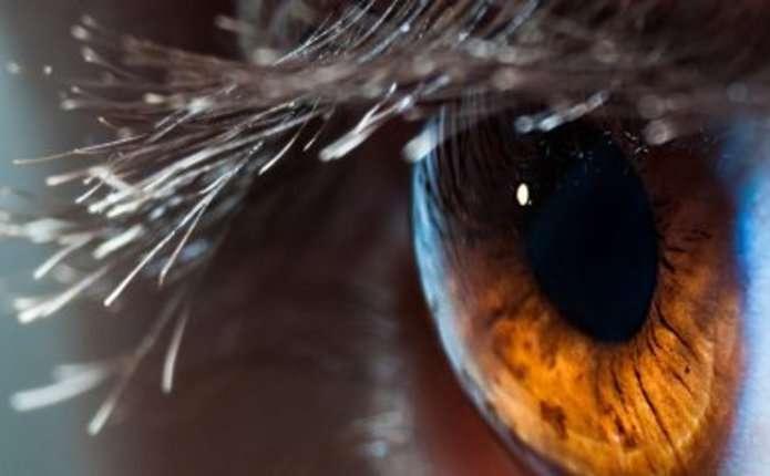Google передбачає ймовірність появи хвороб серця по сітківці ока