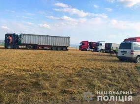 Незаконний збір урожаю: поліція розслідує конфлікт на Заставнівщині