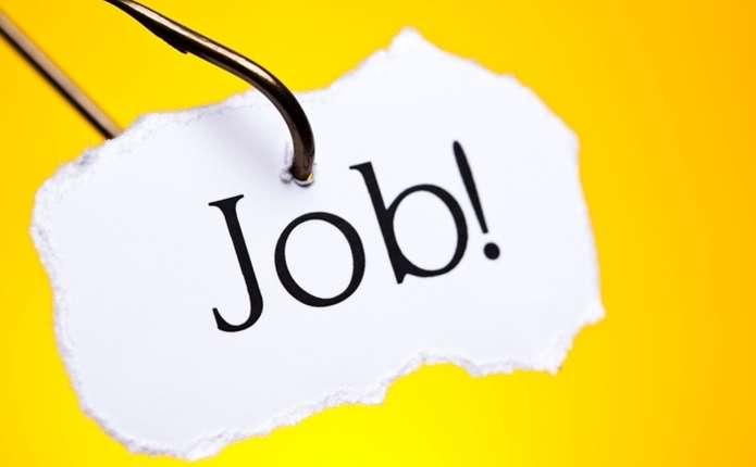 На Буковині у службі зайнятості зареєстровані 1024 вакансії