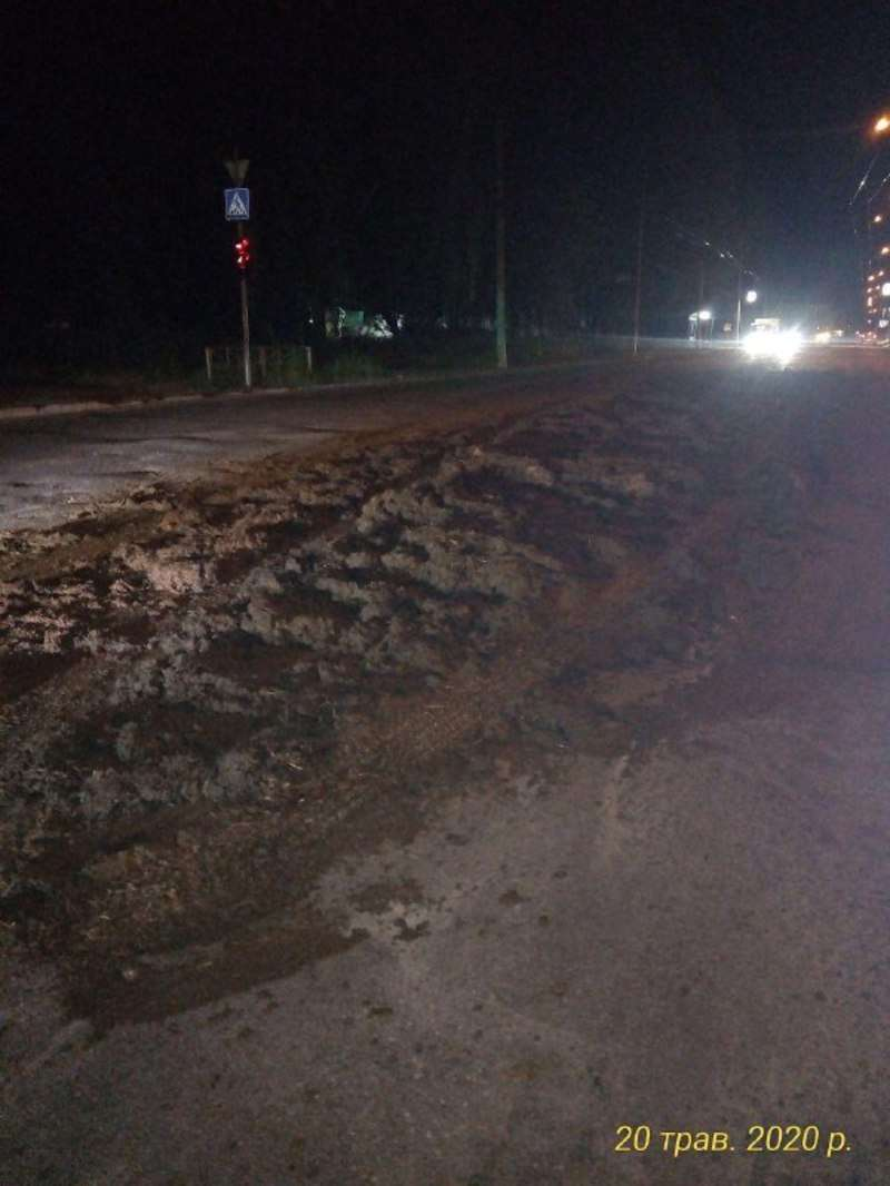 Близько 10 тонн гною висипалося просто на дорогу у Чернівцях